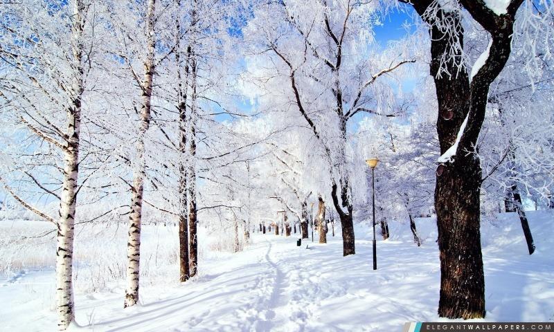 Winter Wonderland, Arrière-plans HD à télécharger