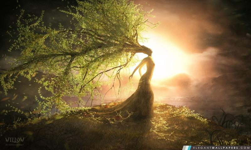 Imagination Willow, Arrière-plans HD à télécharger