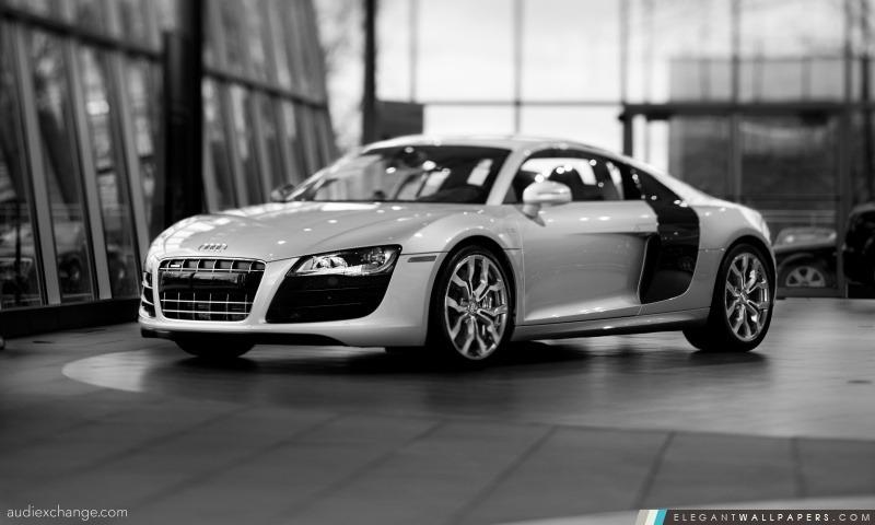 Audi R8 V10 5.2 FSI Coupe, Arrière-plans HD à télécharger