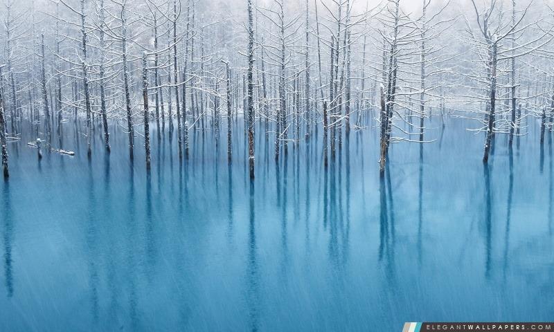 Neige étang, Arrière-plans HD à télécharger