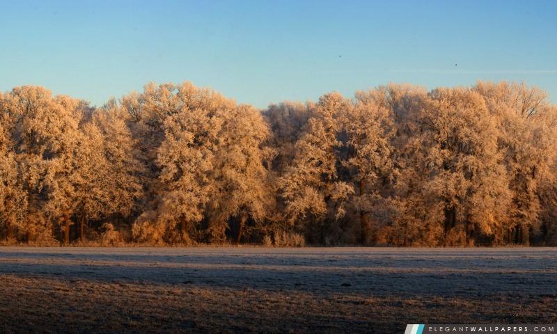 Vue panoramique de la nature, Arrière-plans HD à télécharger