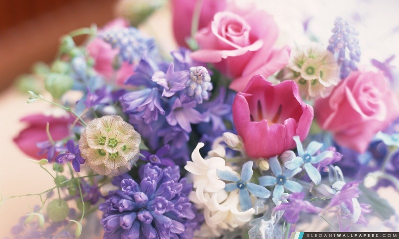 fleurs de printemps bouquet fond d 39 cran hd t l charger elegant wallpapers. Black Bedroom Furniture Sets. Home Design Ideas
