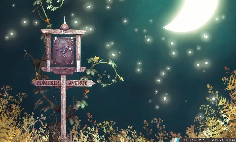 Pumpkin Avenue Halloween, Arrière-plans HD à télécharger