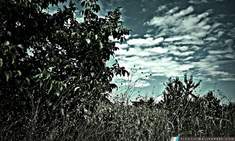 Nature foto impressionnante par Paradoxx, Arrière-plans HD à télécharger