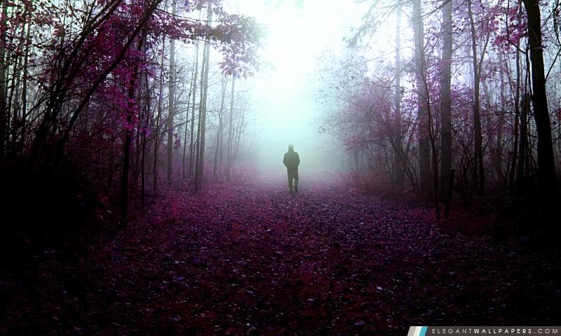 Mystery Walks, Arrière-plans HD à télécharger