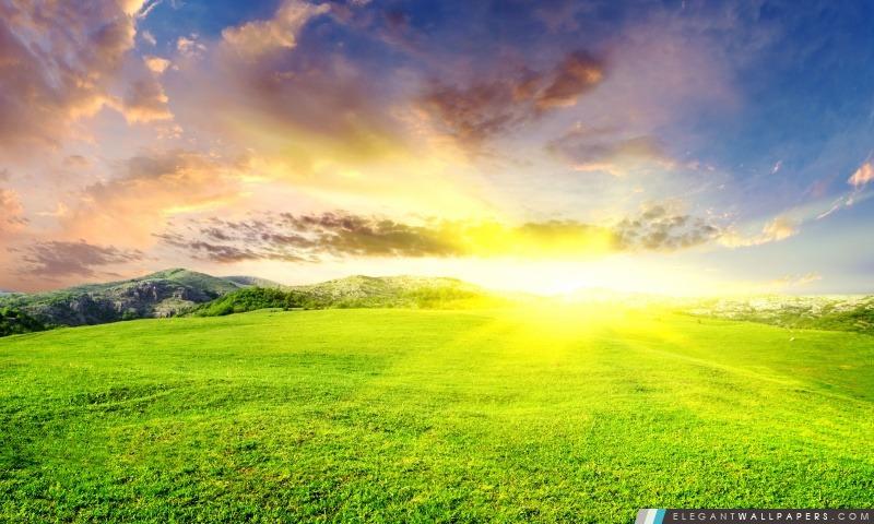 Dazzling Sun, Arrière-plans HD à télécharger