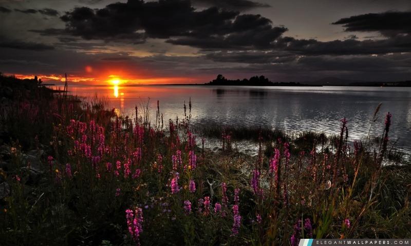 Coucher de soleil sur le lac, Arrière-plans HD à télécharger