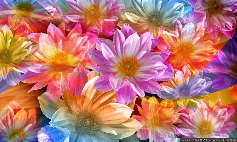 Fantaisie Fleurs, Arrière-plans HD à télécharger