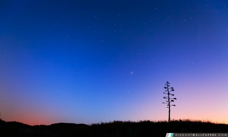 Ciel de nuit, Arrière-plans HD à télécharger