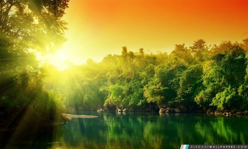 Forest River, Arrière-plans HD à télécharger