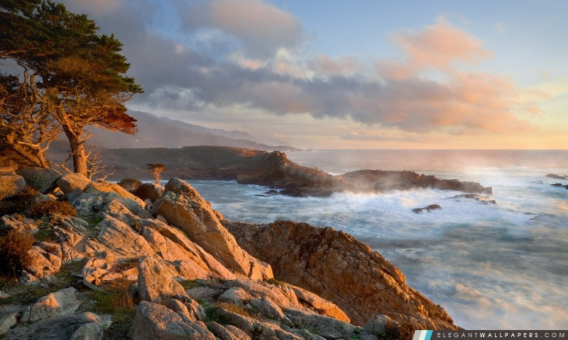 Pointe Cove, point Lobos State Reserve, en Californie, Arrière-plans HD à télécharger