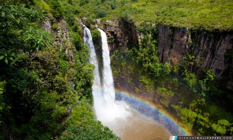 Jungle Waterfall spectaculaire, Arrière-plans HD à télécharger