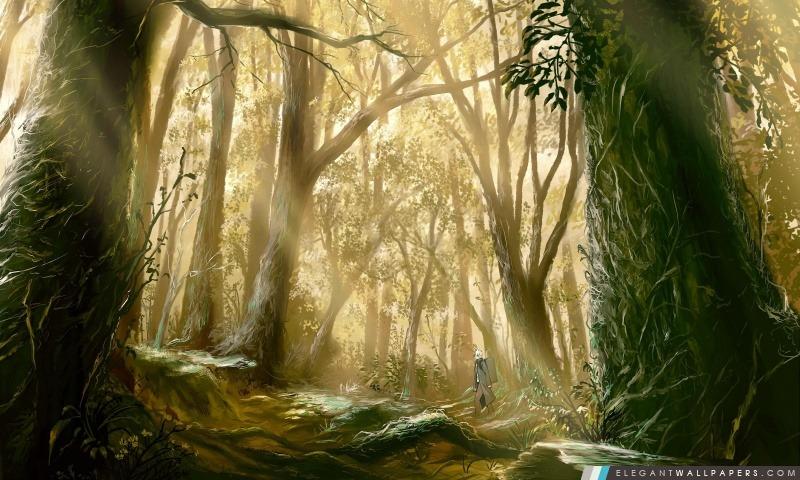 Anime Bois, Arrière-plans HD à télécharger