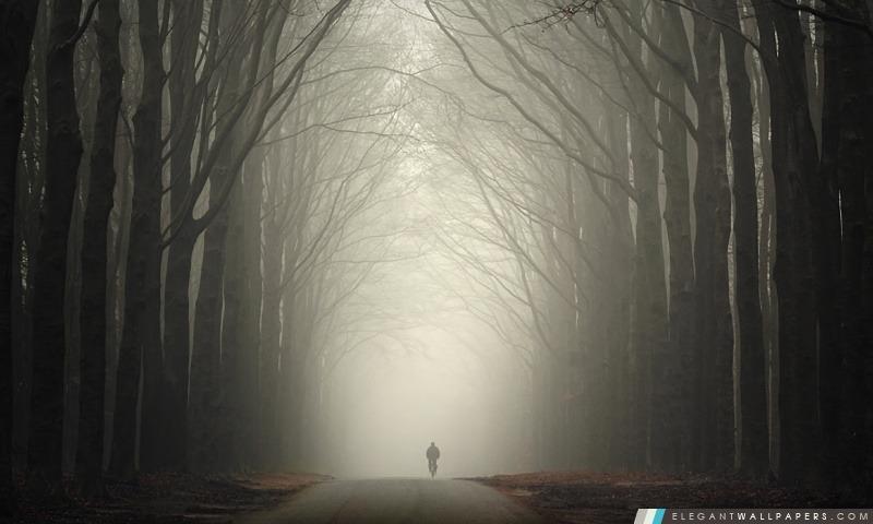 foto de La solitude de l'automne. Fond d'écran HD à télécharger   Elegant ...