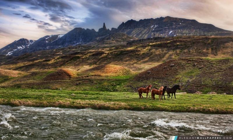Paysage En Islande, Arrière-plans HD à télécharger