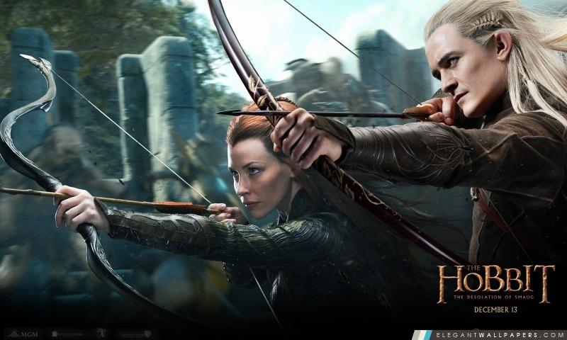 The Hobbit La Désolation de Smaug, Arrière-plans HD à télécharger