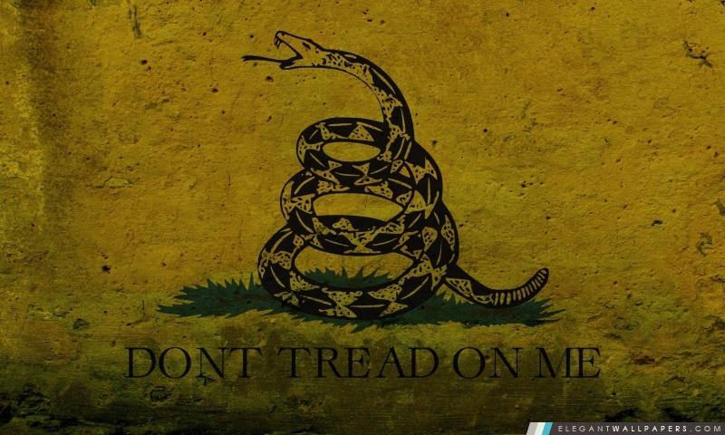 Grunge Ne marchez pas sur moi – le drapeau de Gadsden, Arrière-plans HD à télécharger