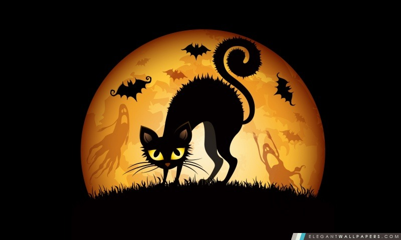 Halloween 2012, Arrière-plans HD à télécharger