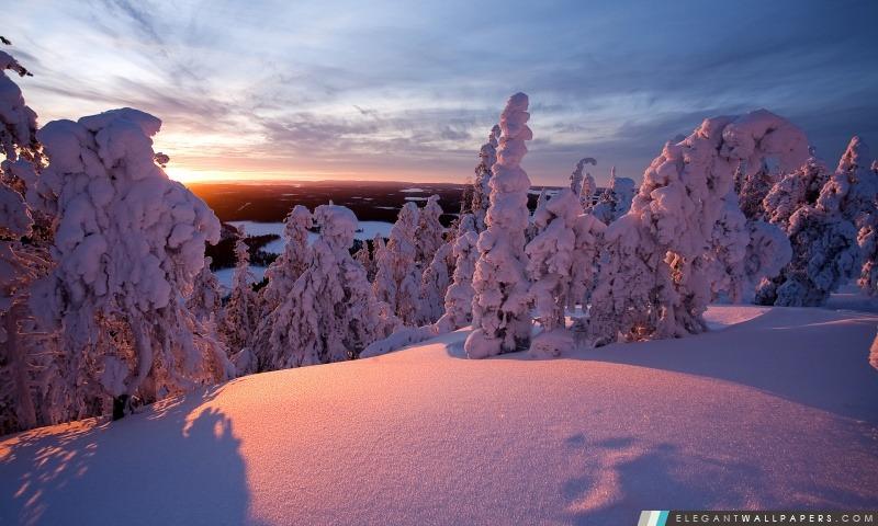 Hiver Laponie Finlande Fond D Ecran Hd A Telecharger