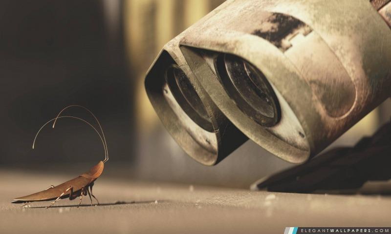 Wall-E et A Cricket, Arrière-plans HD à télécharger