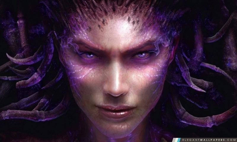 Starcraft II Heart of Swarm, Arrière-plans HD à télécharger