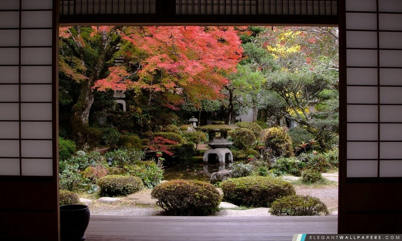 Jardin Japonais Traditionnel Fond D Ecran Hd A Telecharger Elegant Wallpapers