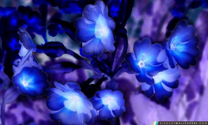 Fleurs rougeoyantes inspirés par Avatar, Arrière-plans HD à télécharger