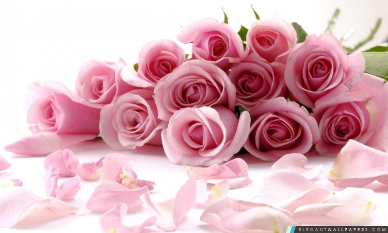 Bouquet Rose De Roses Fond D Ecran Hd A Telecharger Elegant