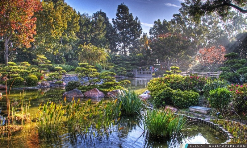 Jardin Japonais Hdr Fond D Ecran Hd A Telecharger Elegant Wallpapers