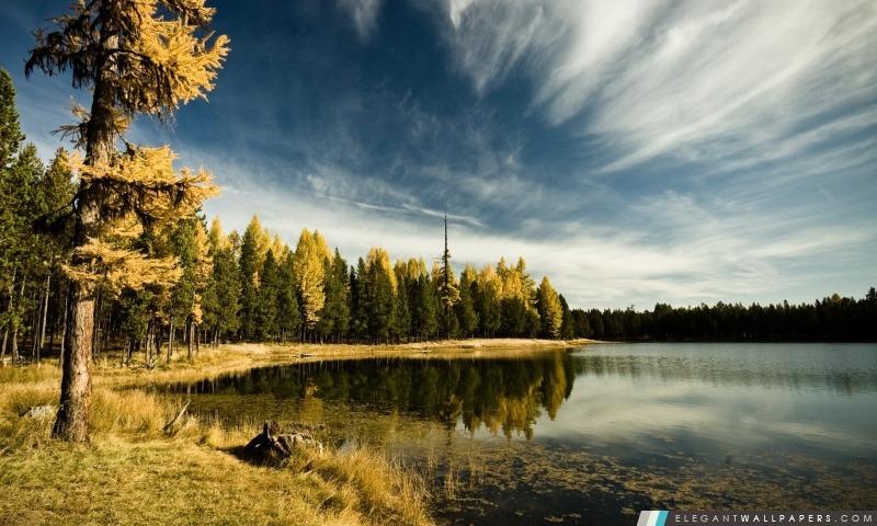foto de Forêt par le lac, l'automne. Fond d'écran HD à télécharger ...