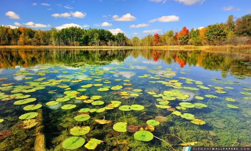 foto de Belle Paysage de lac, l'automne. Fond d'écran HD à télécharger ...