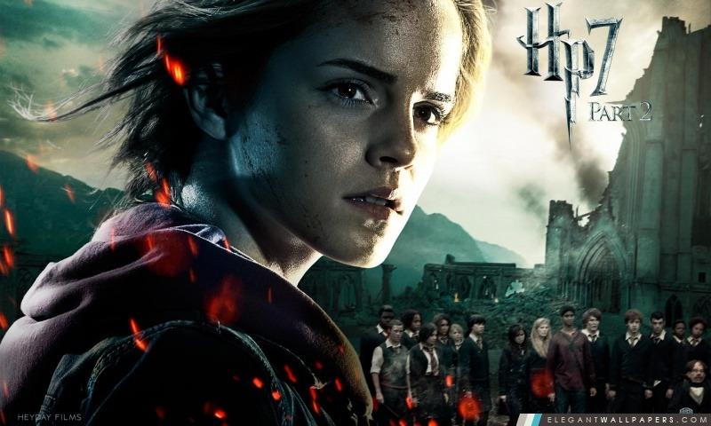 Harry Potter et le Reliques de la Mort Partie 2 Hermione, Arrière-plans HD à télécharger