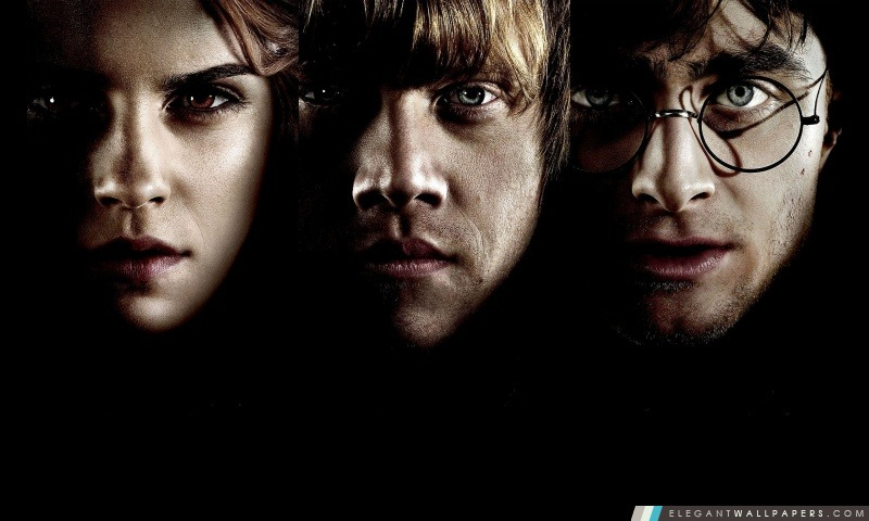 Hermione Ron Et Harry Potter Fond D Ecran Hd A Telecharger