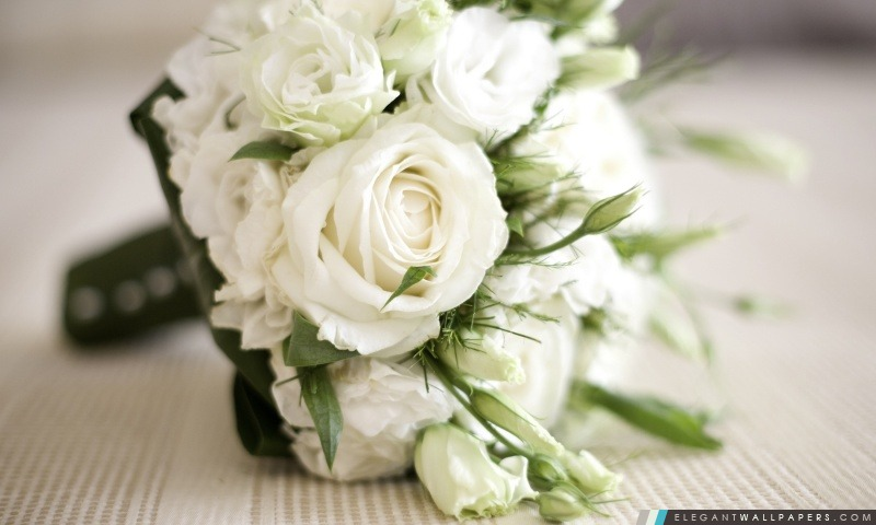 Roses Blanches Bouquet Fond D Ecran Hd A Telecharger Elegant