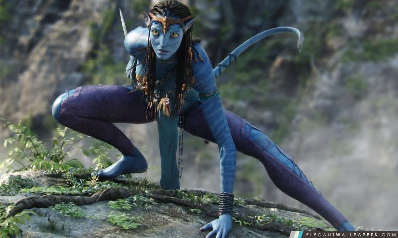 Avatar, Arrière-plans HD à télécharger