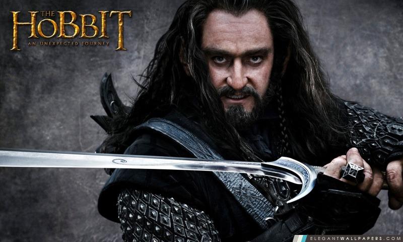 Thorin Ecu de Chêne, Le Hobbit, Arrière-plans HD à télécharger