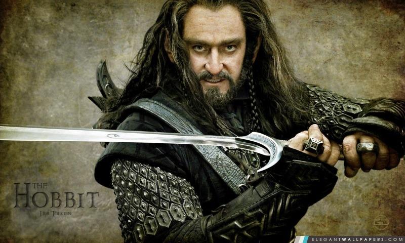 Thorin Ecu de Chêne, Le Hobbit Un voyage inattendu, Arrière-plans HD à télécharger