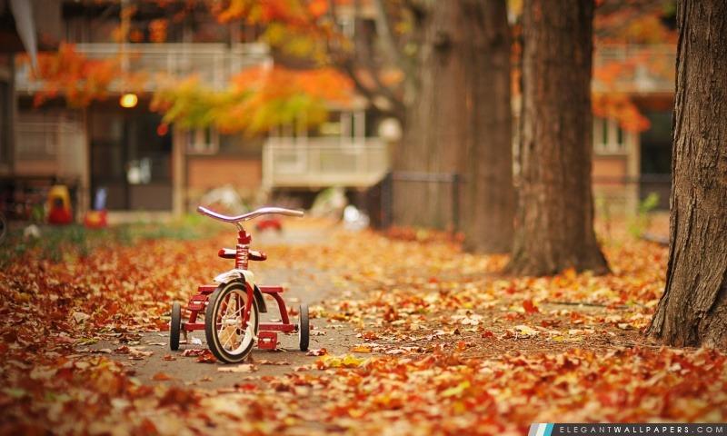 Tricycle, Arrière-plans HD à télécharger