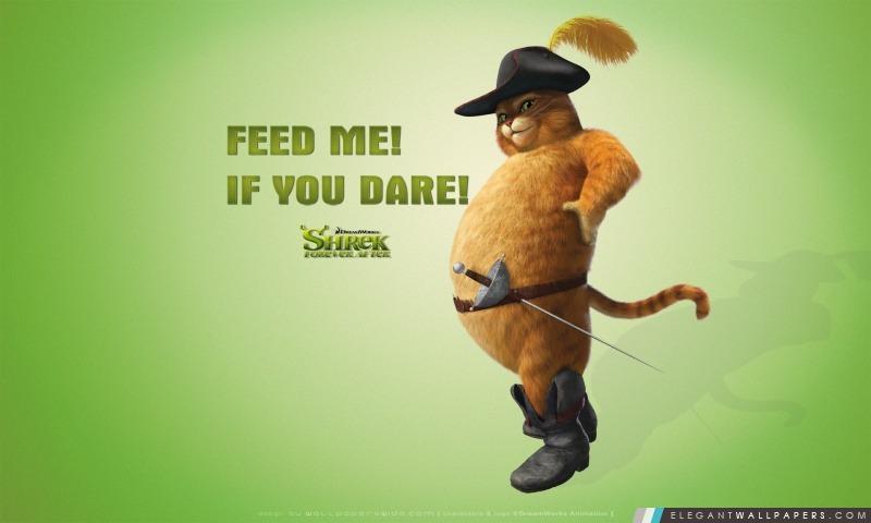 Alimentez-moi si vous osez, Puss in Boots, Shrek Forever After, Arrière-plans HD à télécharger
