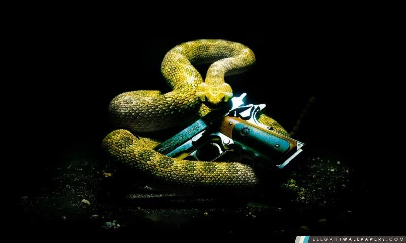 Hitman Absolution Rattlesnake HD, Arrière-plans HD à télécharger