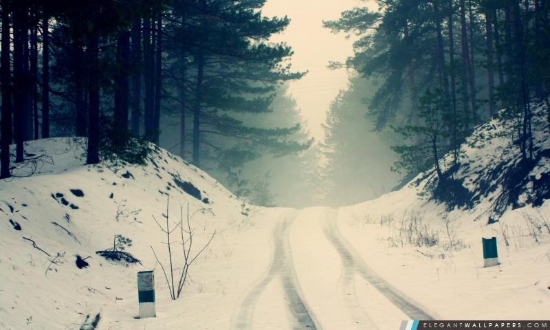 Neige voiture Titres par la route forestière, Arrière-plans HD à télécharger