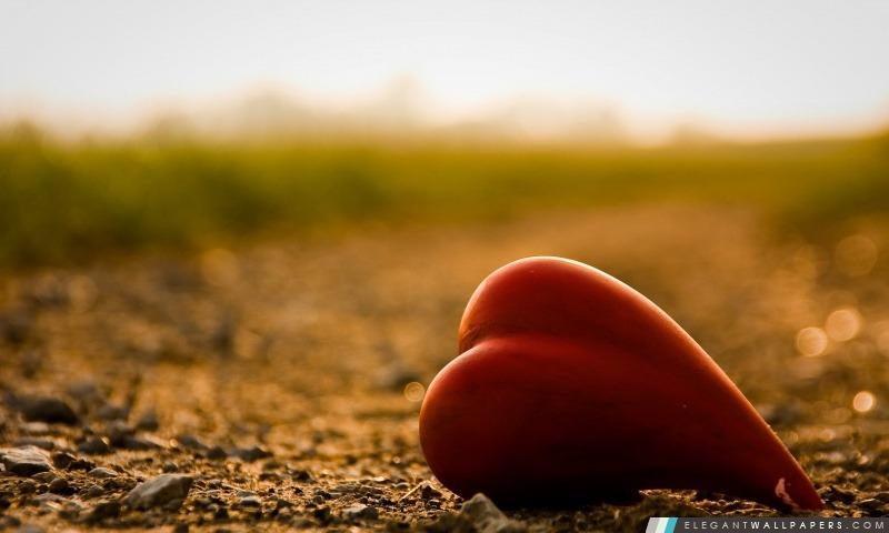 Coeur Macro, Arrière-plans HD à télécharger