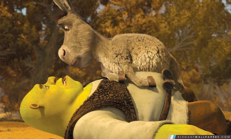 Shrek Et L âne Elegant Wallpapers