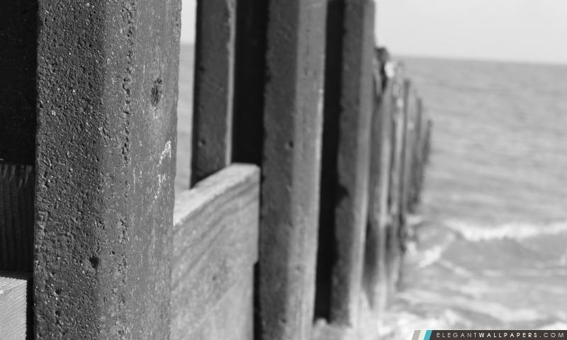 Dans la mer, Arrière-plans HD à télécharger