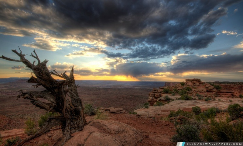 Canyonlands Overlook, Arrière-plans HD à télécharger
