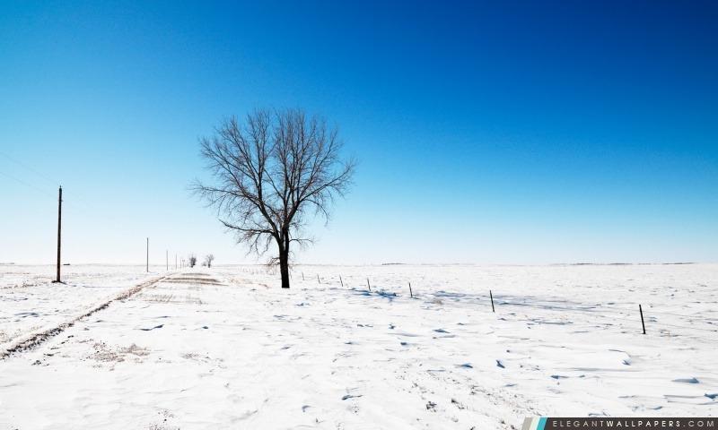 Seul dans la neige, Arrière-plans HD à télécharger
